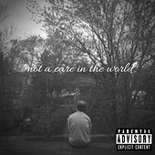 Not a Care in the World de Remi