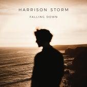 Falling Down by Harrison Storm