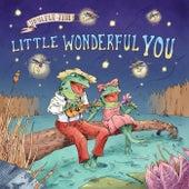 Little Wonderful You by Ukulele Jim