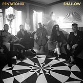 Shallow by Pentatonix