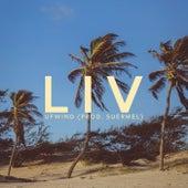 Ufwind by L.I.V.