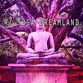 47 Yoga Dreamland de Nature Sounds Artists