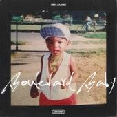 Boulevard Baby de Reek Lauren
