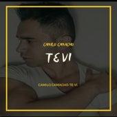 Te Vi de Camilo Camacho