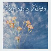 Relaxing Music von Various Artists