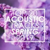 Top 20 Acoustic Tracks Spring 2019 de Guitar Tribute Players