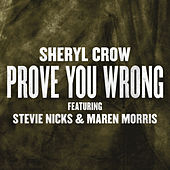 Prove You Wrong by Sheryl Crow