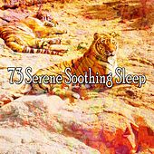 73 Serene Soothing Sleep de Dormir