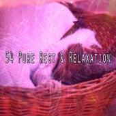 54 Pure Rest & Relaxation de Dormir