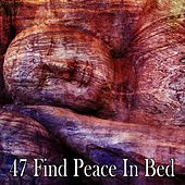 47 Find Peace in Bed de White Noise Babies