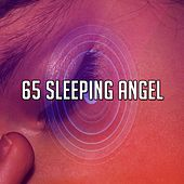 65 Sleeping Angel de White Noise Babies