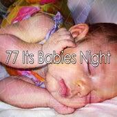 77 Its Babies Night de Nature Sounds Nature Music (1)