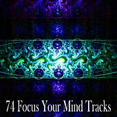 74 Focus Your Mind Tracks de Zen Meditation and Natural White Noise and New Age Deep Massage