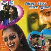 Dil Mera Tera Hua de Various Artists