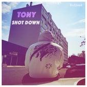 Shot Down de Tony