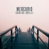 Mercurio de Carlos Grilli