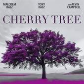 Cherry Tree by Malcom Baez