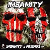 & Friends - Single de Insanity