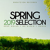 Spring Selection 2019 von Various