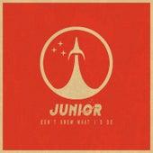 Don't Know What I'd Do de Junior