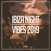 Ibiza Night Vibes 2019 de Various