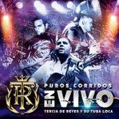 Puros Corridos (En Vivo) by Tercia De Reyes Y Su Tuba Loca