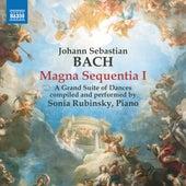Magna Sequentia I von Sonia Rubinsky