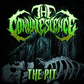The Pit by Convalescence