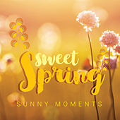 Sweet Spring: Sunny Moments by Various Artists
