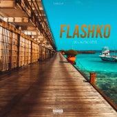 De l'autre côté de Flashko