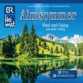 BR Heimat / Almsommer - Musi und Gsang aus dem Gebirg by Various Artists