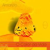 Amarelo - O Calor da Vida von Emílio Cavalcanti