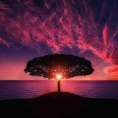 La Mezcla De Elementos Esenciales Para El Sueño Profundo - 18 Pistas Relajantes Para Un Sueño Profundo Y Un Enfoque Pacífico de Musica Relajante