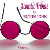 Acoustic Tribute to Elton John: Guitar by Steve Petrunak