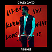When You Know What Love Is (Remixes) van Craig David