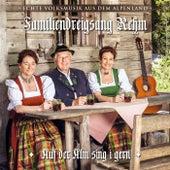 Auf da Alm sing i gern - echte Volksmusik aus dem Alpenland by Various Artists