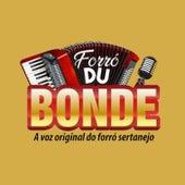 Forró Du Bonde, Vol. 01 de Rodrigo Alves Cantor