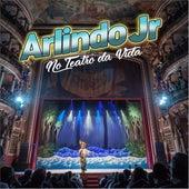 No Teatro da Vida (Ao Vivo) de Arlindo Junior