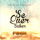 Se Quer Saber (PRINSH Remix) de Prinsh
