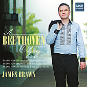 A Beethoven Odyssey, Vol. 6 de James Brawn