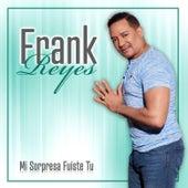 Mi Sorpresa Fuiste Tú by Frank Reyes
