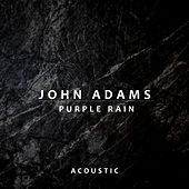 Purple Rain (Acoustic) by John Adams