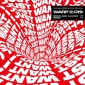 Warp 2.019 (feat. Steve Aoki) (Steve Aoki & Kayzo Remix) de The Bloody Beetroots