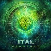 Geomancy - Single by Ital