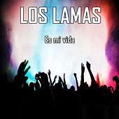 Es Mi Vida de Los Lamas