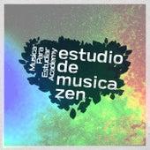 Estudio de musica zen de Musica Para Estudiar Academy