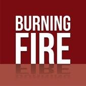 Burning Fire de Various Artists