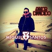 Amor Dividido von Miguel Santos