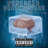 Brainfreeze de Garfield