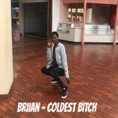 Coldest Bitch de Briian